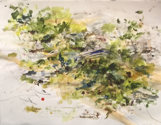 Spring Branch